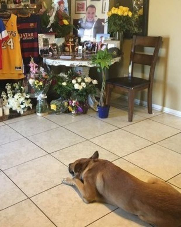 Heartbreaking: Dog Mourns His Dead Owner (Photos) Promo Image