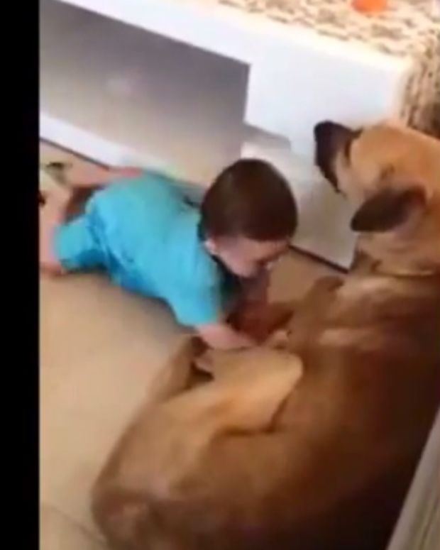 dogbaby1.jpg