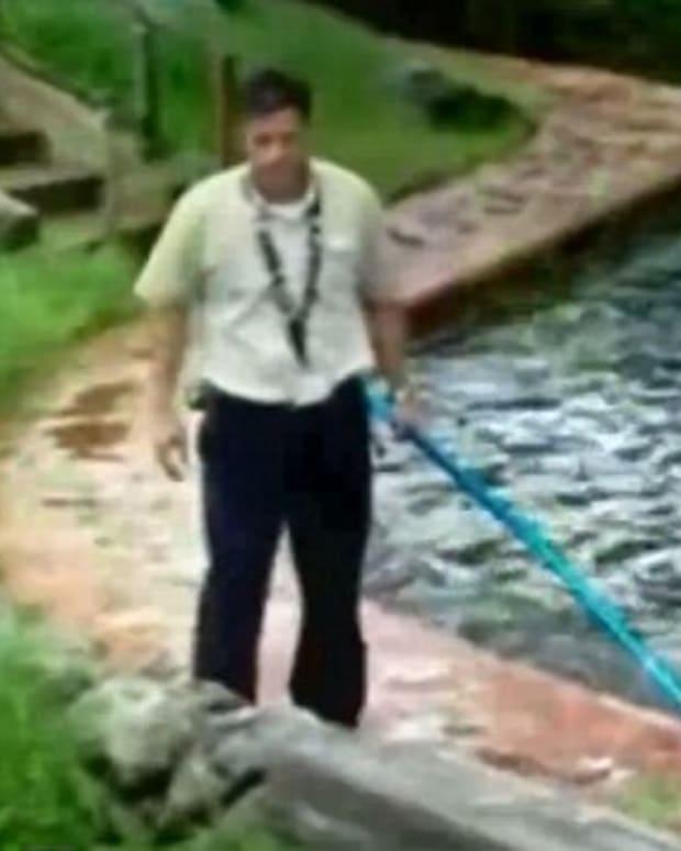 Disney World Employee Fends Off Alligator (Video) Promo Image
