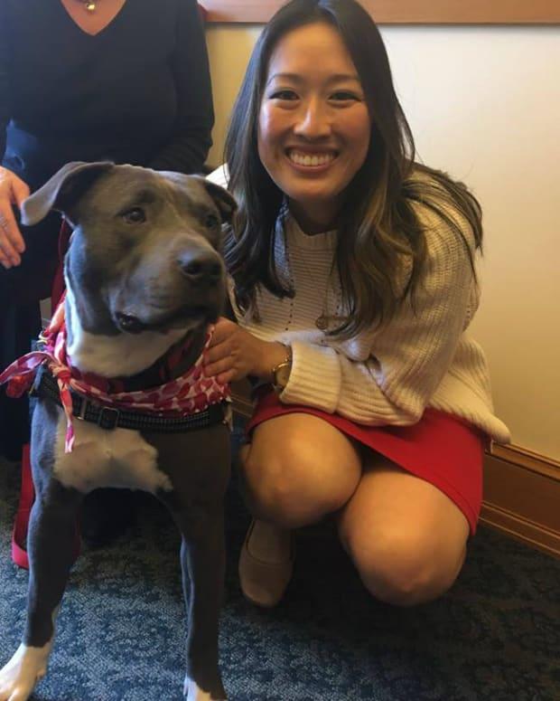 San Francisco Law: No Puppy Mill Sales To Pet Stores Promo Image