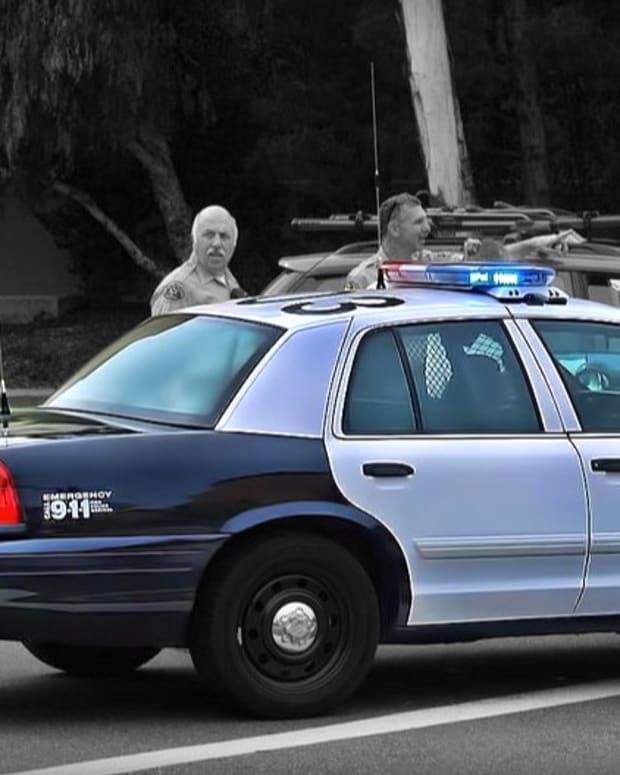 Los Angeles Deputies Kill Teen While Shooting At Dog (Video) Promo Image