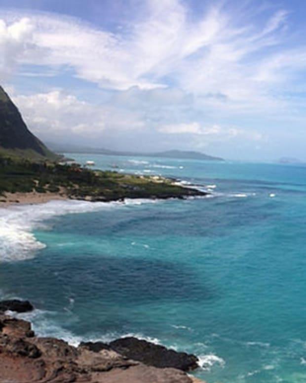 HawaiiBirthDefects.jpg
