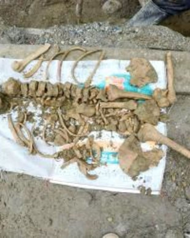 4,800-Year-Old Female Skeleton Cradling Baby Found Promo Image