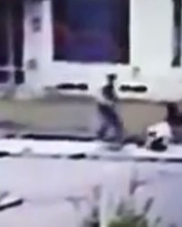 8-Year-Old Girl Mauled By Pit Bull (Video) Promo Image