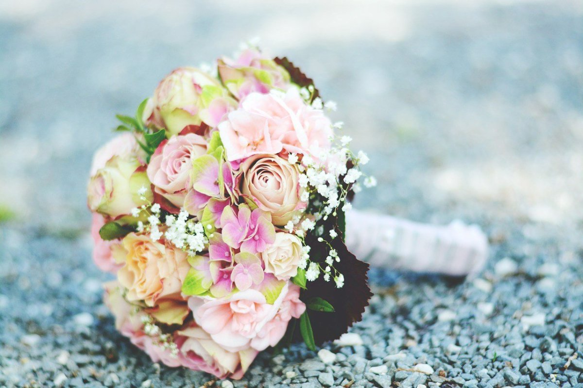 Car Crash Claims Newlywed Couple Hours After Wedding Promo Image