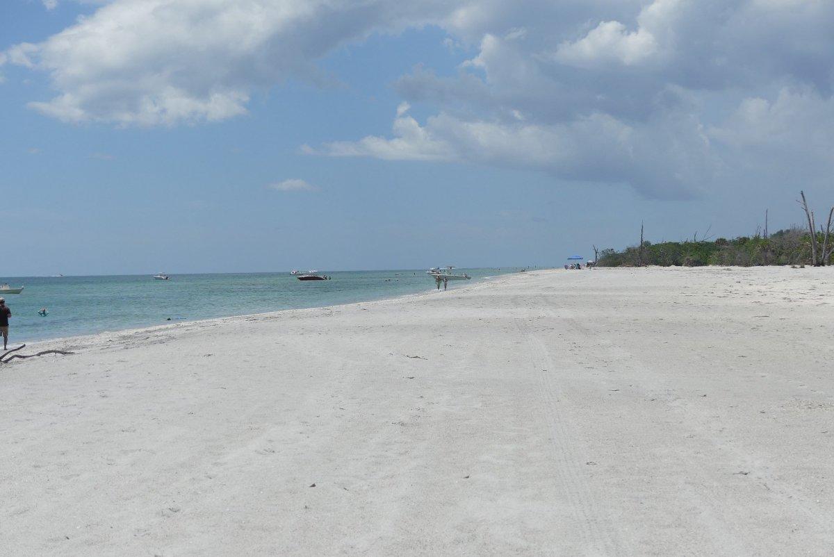 Frisky Couple Caught In The Act On Florida Beach (Photos) Promo Image