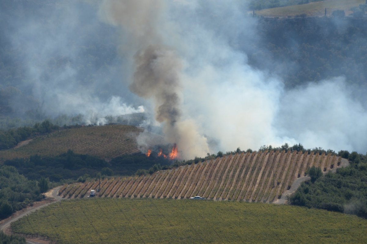 California Sheriff: Breitbart Made Up Wildfire Story Promo Image