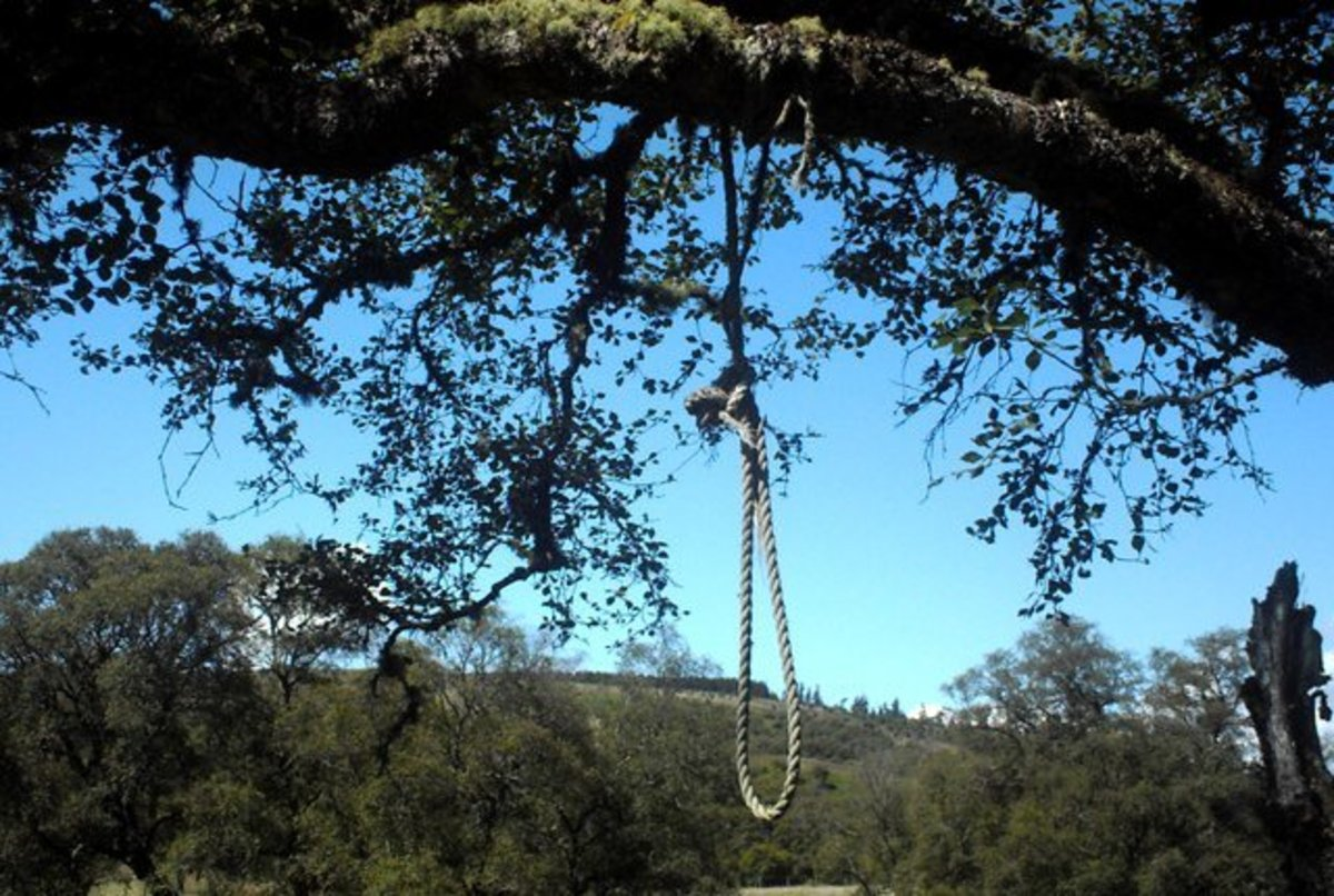 Boy, 8, Hospitalized After Teens Hang Him From A Tree (Photos) Promo Image