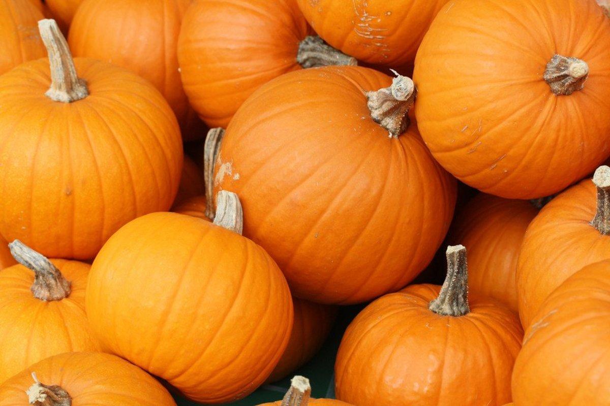 Pumpkin Spice Air Freshener Causes School Evacuation Promo Image