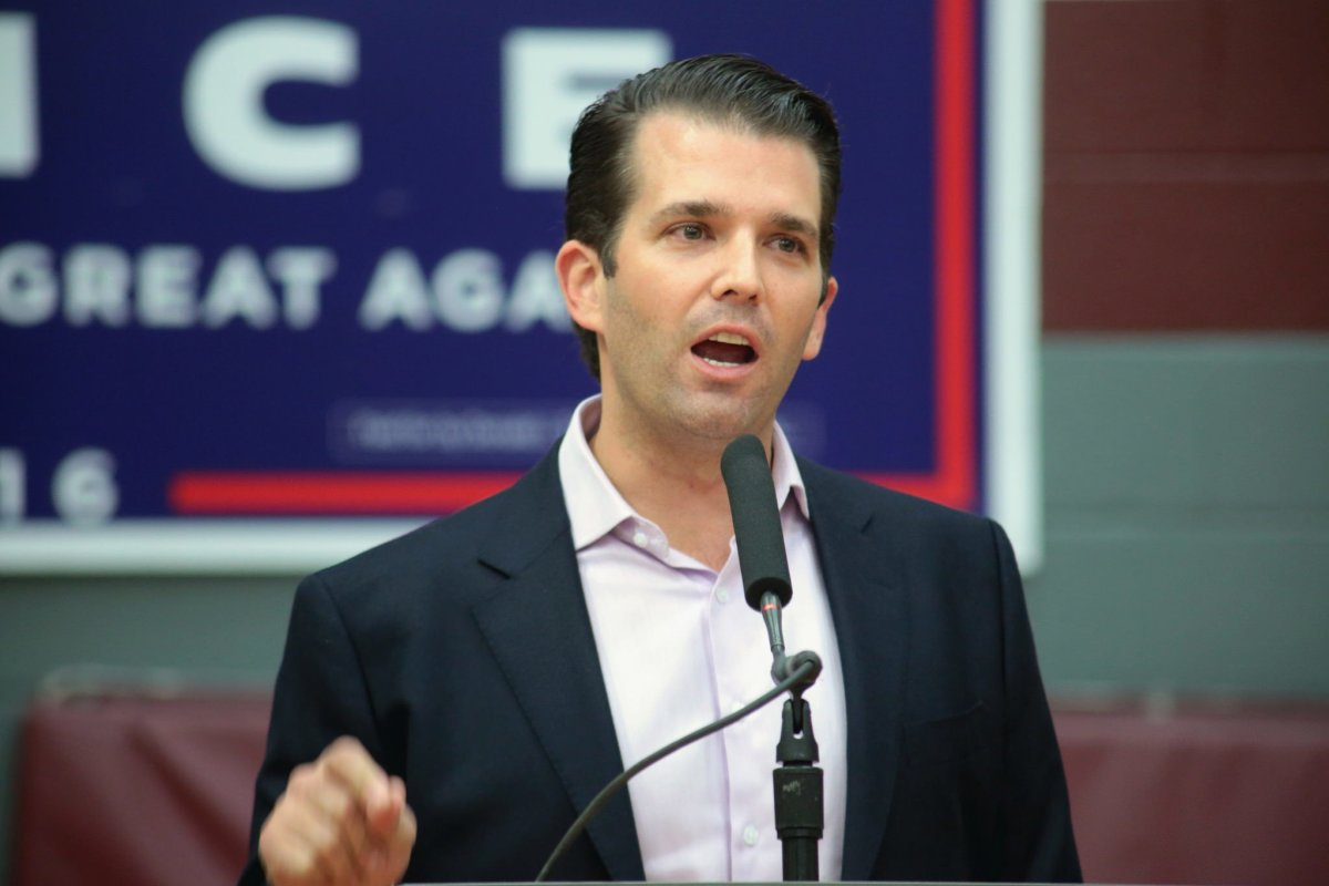 GOP Senator: Public Hearing Coming For Donald Trump Jr. Promo Image