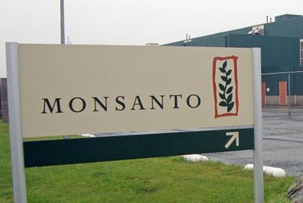 Monsanto Caught Ghostwriting Academic's Article (Photos)  Promo Image