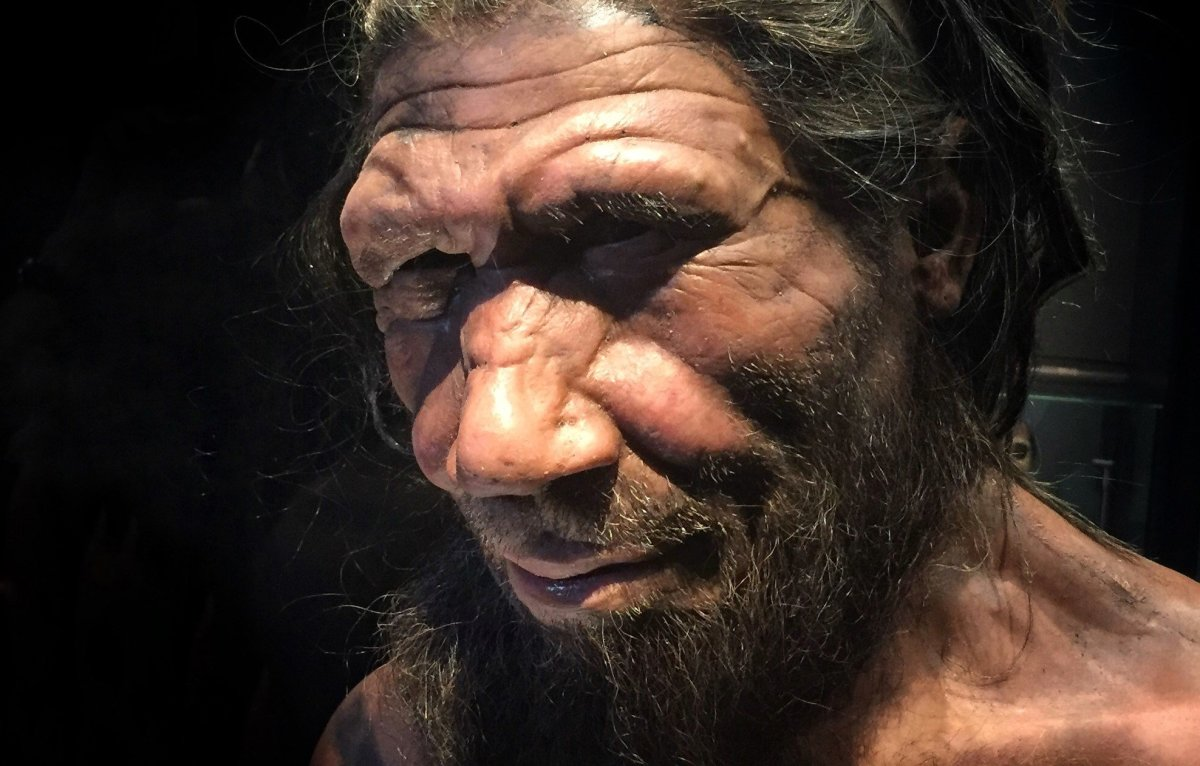 Neanderthals Died Out Later Than Previously Believed Promo Image