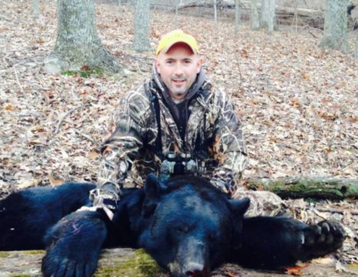 Virginia man kills 650 pound black bear during hunting trip image placeholder title publicscrutiny Choice Image